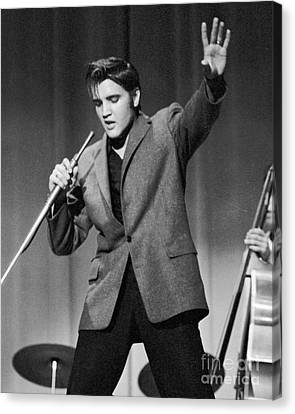 Elvis Presley Performing In 1956 Canvas Print by The Harrington Collection