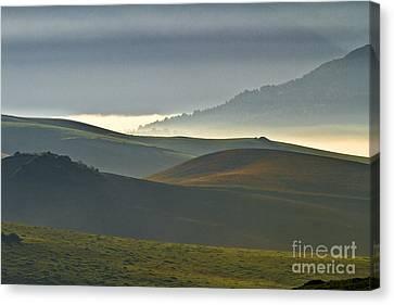 Embalses Del Guadalteba Landscape - Andalusia Canvas Print by Heiko Koehrer-Wagner