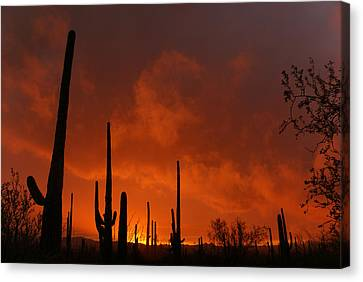 Embers Of The Day Canvas Print by Justin  Curry