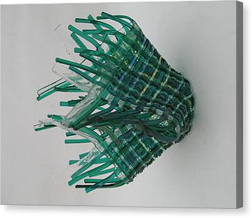 Emerald Glassket Canvas Print by Steven Schramek