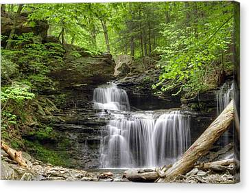 Canvas Print featuring the photograph Emerald Trees Surround R. B. Ricketts Falls by Gene Walls