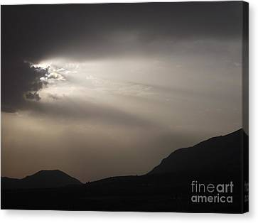 Emergence In Andalusia Canvas Print by R McLellan