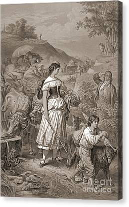 Cattle Dog Canvas Print - Emigrants 1882 by Padre Art