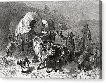 Cattle Dog Canvas Print - Emigration To The Western Country, Engraved By Bobbett Engraving Bw Photo by Felix Octavius Carr Darley