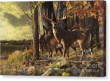 Eminence At The Forest Edge Canvas Print