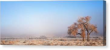 Darren Canvas Print - Emptiness Of Moab by Darren  White