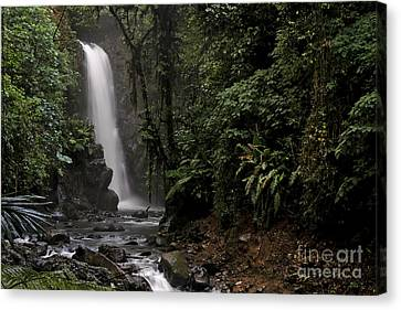 Canvas Print featuring the photograph Encantada Waterfall Costa Rica by Teresa Zieba