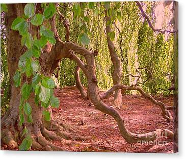 Canvas Print featuring the photograph Enchanted by Becky Lupe
