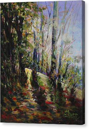Enchanted Forest Canvas Print by Sher Nasser