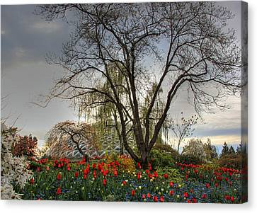 Canvas Print featuring the photograph Enchanted Garden by Eti Reid