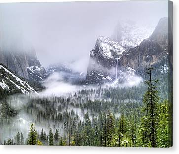 Yosemite Valley Canvas Print - Enchanted Valley by Bill Gallagher