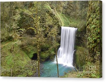 Enchanted Wilderness Waterfall Canvas Print by Andrea Hazel Ihlefeld