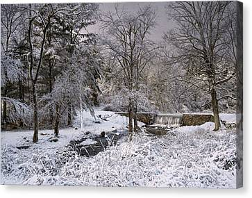Enchanted Winter Canvas Print by Robin-lee Vieira