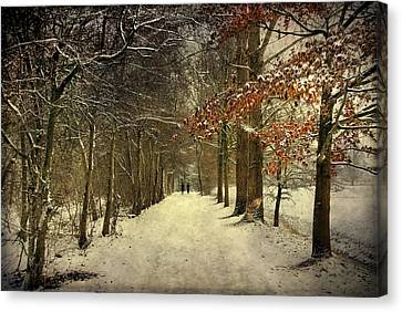 Canvas Print featuring the photograph Enchanting Dutch Winter Landscape by Annie Snel