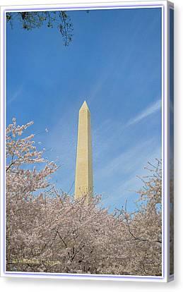 Enchanting Spring In Washington Canvas Print by Sonali Gangane
