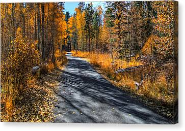 End Of Fall Canvas Print by Mike Ronnebeck