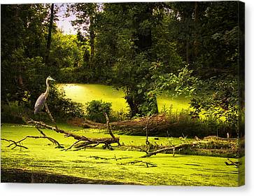 End Of Path Merged Image Canvas Print by Thomas Woolworth