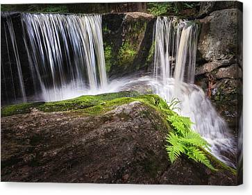 Enders Falls 3 Canvas Print