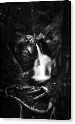 Stream Canvas Print - Enders Falls Black And White by Bill Wakeley