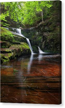 Enders Falls Portrait Canvas Print by Bill Wakeley