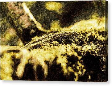 Endgraving Forest 3 Canvas Print by Yevgeni Kacnelson