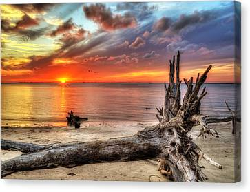 Endings Canvas Print by Greg and Chrystal Mimbs