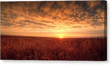 Warm Summer Canvas Print - Endless Oz by Thomas Zimmerman