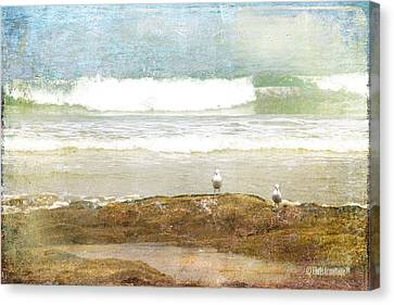 Canvas Print featuring the photograph Endless Summer by Chris Armytage