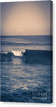 Endless Summer Canvas Print by Edward Fielding