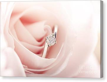 Engagement Ring In Pink Rose Canvas Print by Jelena Jovanovic