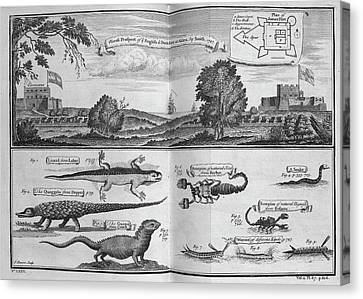 English And Dutch Forts Canvas Print by British Library
