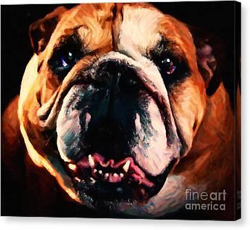 English Bulldog - Painterly Canvas Print by Wingsdomain Art and Photography