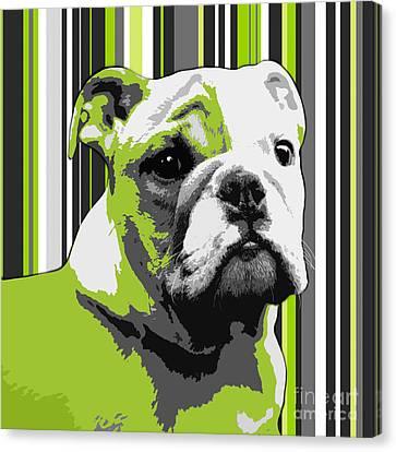 English Bulldog Puppy Abstract Canvas Print by Natalie Kinnear