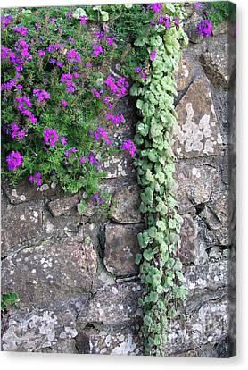 English Garden Wall Canvas Print