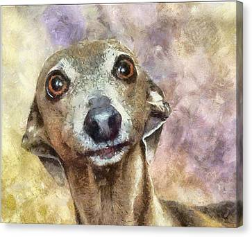 Canvas Print featuring the painting English Hound Hunting Dog by Georgi Dimitrov