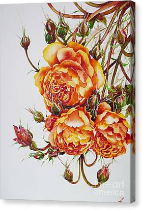 English Roses Canvas Print by Zaira Dzhaubaeva