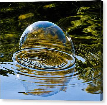 Enjoy This Moment Canvas Print by Terry Cosgrave