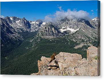 Canvas Print featuring the photograph Enjoying The View by Tyson and Kathy Smith