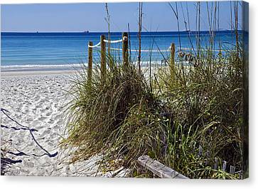 Enter The Beach Canvas Print by Susan Leggett