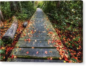 Enter The Woods - Retzer Nature Center - Waukesha Canvas Print by Jennifer Rondinelli Reilly - Fine Art Photography