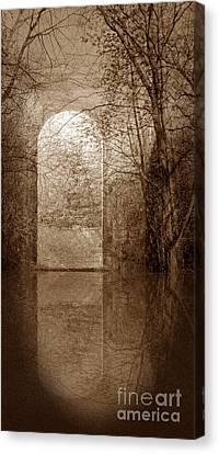 Entranced Canvas Print by Liz  Alderdice