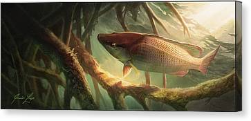 Rooted Canvas Print - Entre Mangles by Javier Lazo