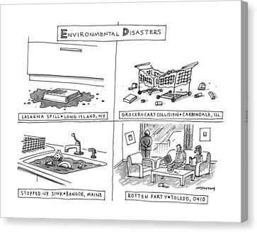 Envrionmental Disasters Canvas Print