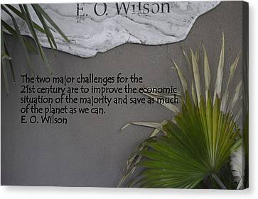 E.o. Wilson Quote Canvas Print by Kathy Barney