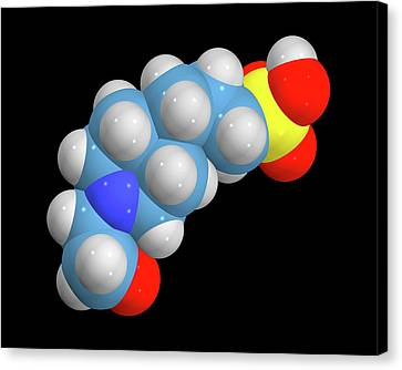 Epps Molecule Canvas Print by Dr Tim Evans