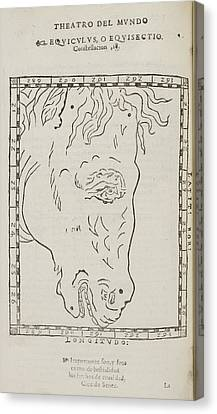 Equiculus Star Constellation Canvas Print by British Library