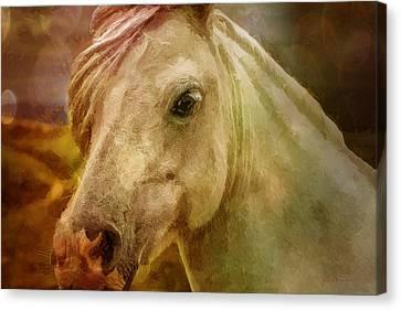 Equine Fantasy Canvas Print by EricaMaxine  Price