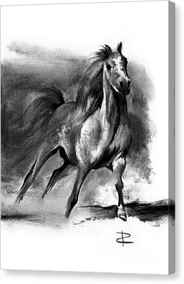 Canvas Print featuring the drawing Equine II by Paul Davenport