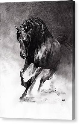 Equine Canvas Print by Paul Davenport