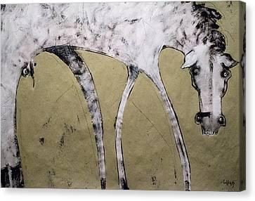 Equos Canvas Print by Mark M  Mellon